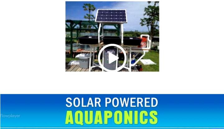 Solar Powered Aquaponics Video Training Course