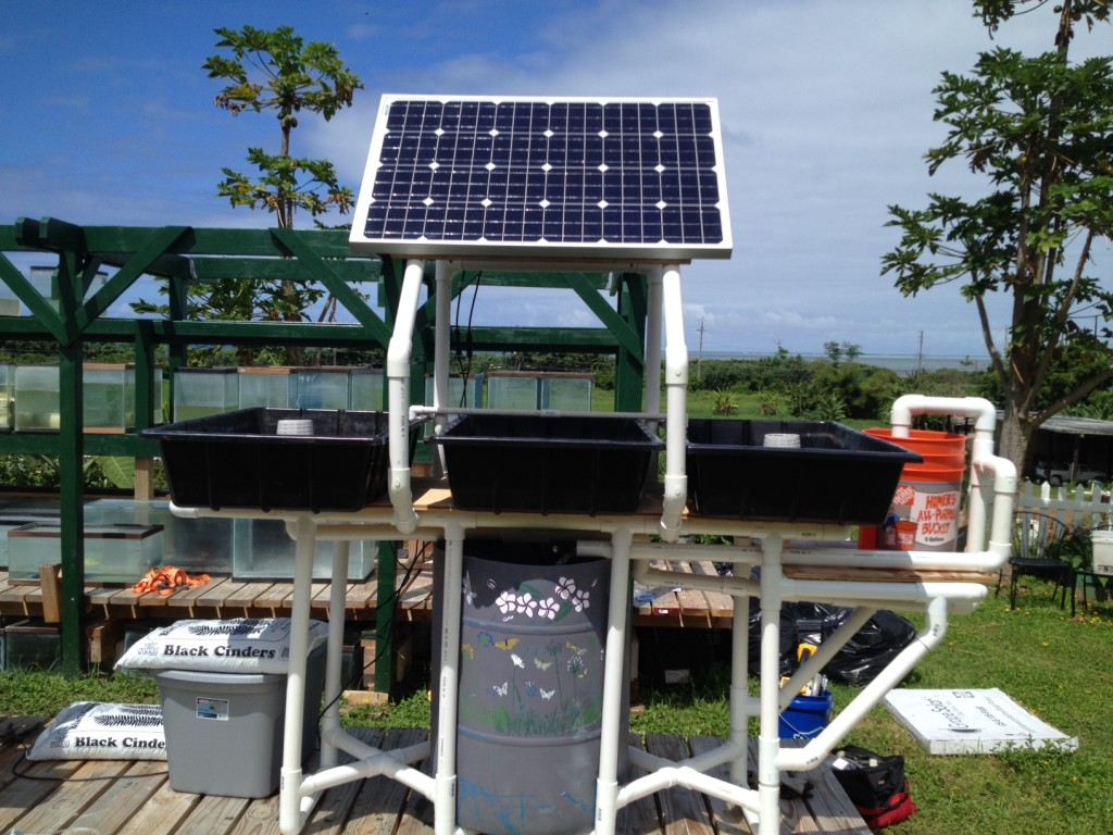 Solar Powered Aquaponics System